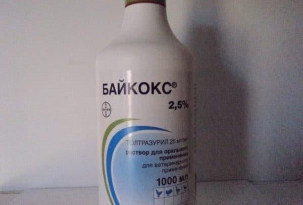 Байкокс — эффективный препарат для профилактики и лечения кокцидиоза