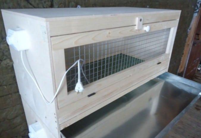 Размеры готового брудера зависят от количества цыплят