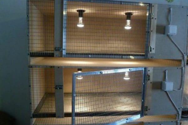 Для удобства наблюдения за малышами в крышке цыплятника устраивают стеклянные окна