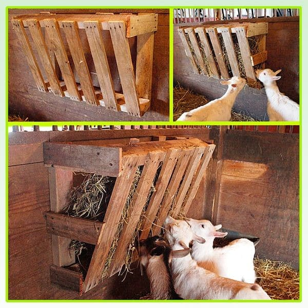 Простой деревянный вариант кормушки для козы