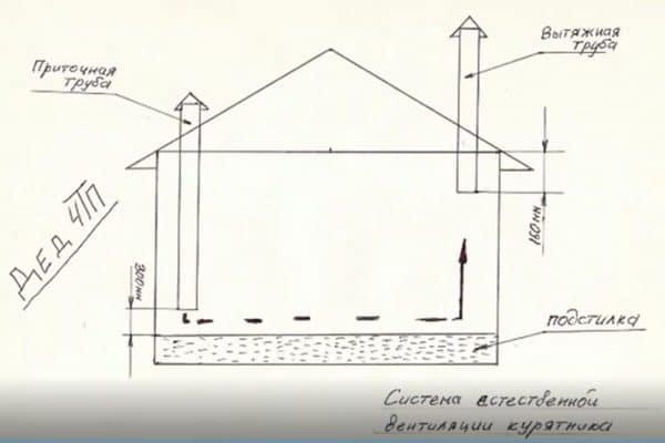 Система естественной вентиляции в курятнике