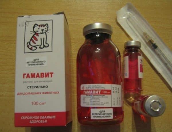 Гамавит представляет собой раствор для инъекций. Вводят в/м, п/к, внутрибрюшинно