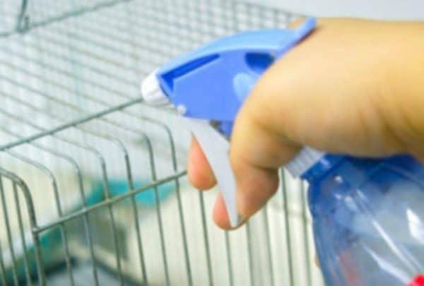 Во время применения метода аэрозолоьной дезинфекции струю следует разместить на расстоянии не менее 2 метров от животных