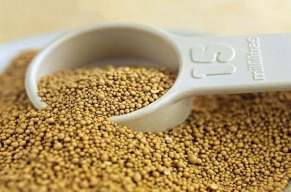Недостаточное количество белков снижает скорость роста и набора массы