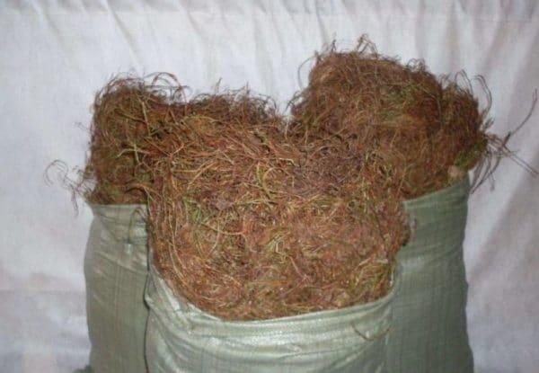 Торфяной мох из-за низкой теплопроводности часто используется в качестве теплоизоляционного материала