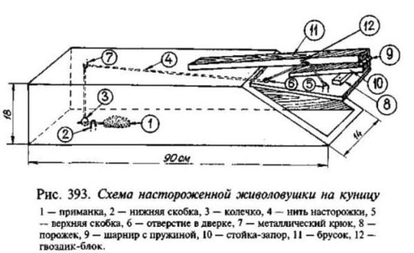 Схема живоловушки