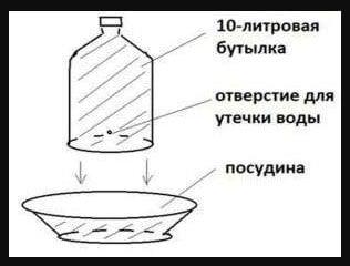 Схема поилки из бутыли 5-10 литров