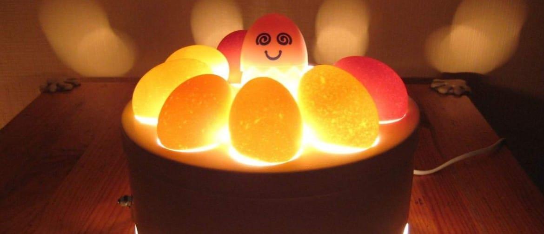 отце второй проверка яиц овоскопом фото скором времени
