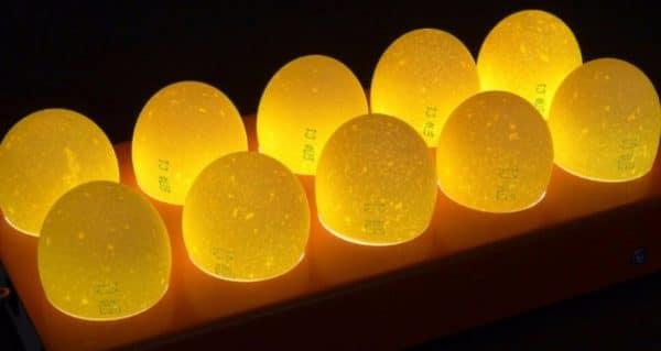 Если укладывать в инкубатор яйца все подряд, то с большей вероятностью часть их будет с дефектами, которые не различить на глаз, из таких яиц цыплята не вылупятся, а яйца пропадут в инкубаторе