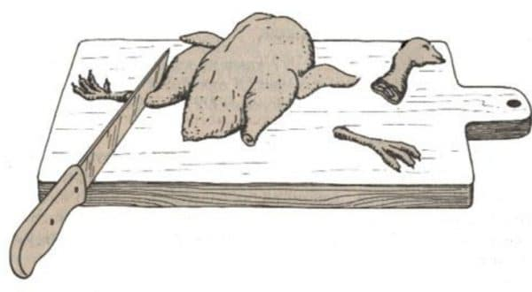 Перед потрошением с туши удаляют лапы и голову