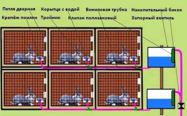 Автоматическая поилка для кроликов