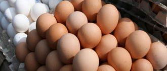 Как ощипать и разделать курицу в домашних условиях
