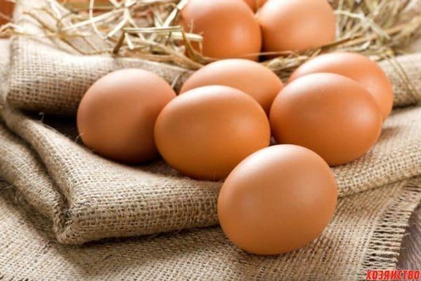 Сколько яиц несет курица в неделю