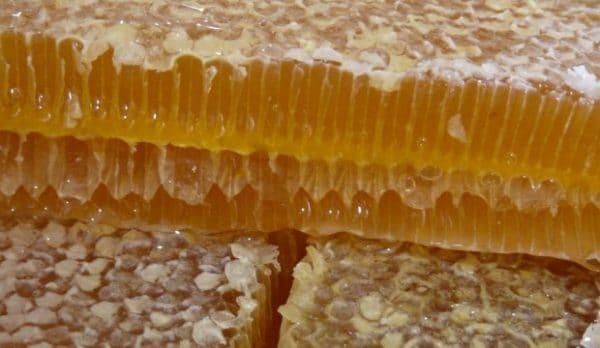 Применение забруса пчелиного
