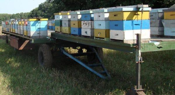 Платформа для перевозки пчел
