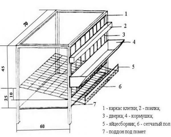 Как сделать клетку из фанеры для перепелов