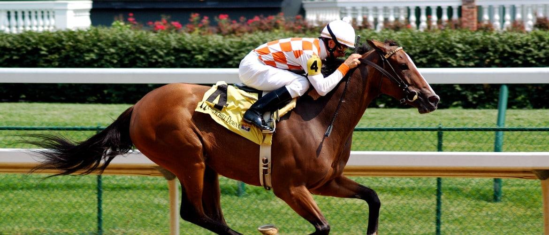 Средняя и максимальная скорость лошади, каков рекорд?