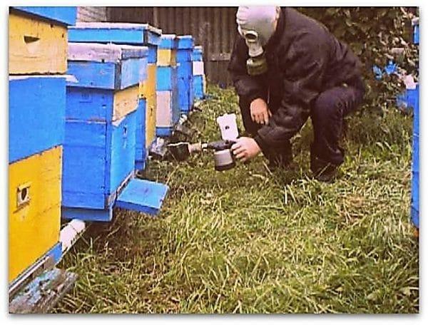 Обработка пчел дым-пушками с растворами