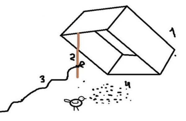 Как поймать в коробку или ящик