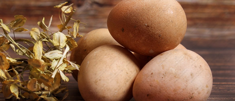 Яйца цесарки польза и вред