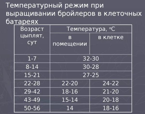 Температурный режим для выращивания бройлеров таблица
